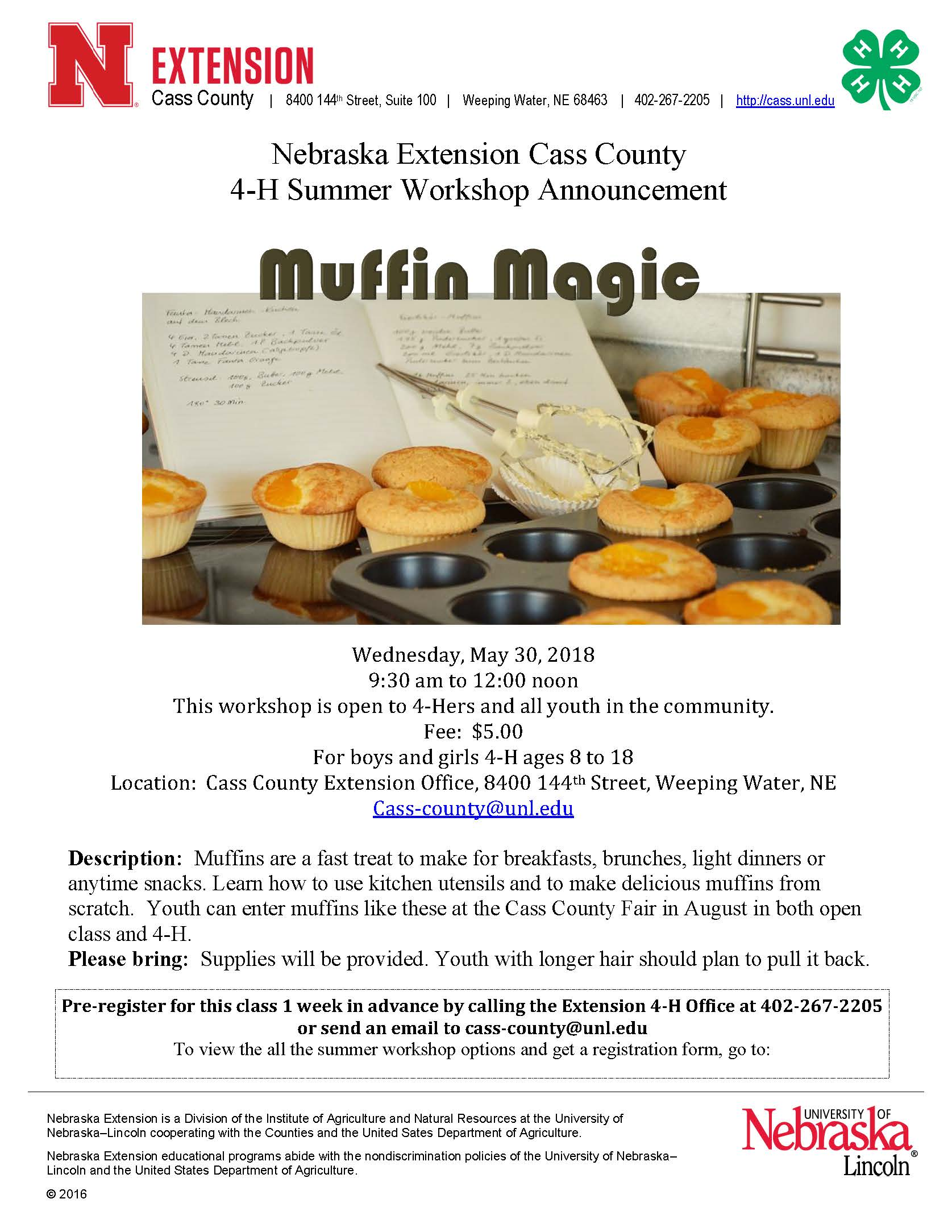 Muffin Magic Workshop 2018 1